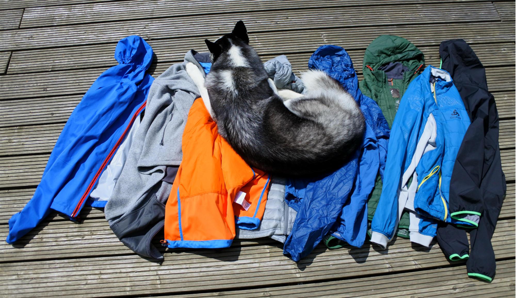 Viele Jacken und ein Husky